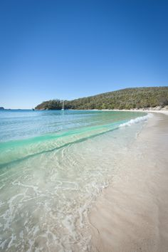 Wineglass Bay - Tasmania - Australia. Has one of the whitest purist waters and beach in the world.