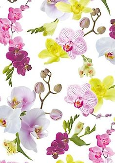 Gift wrap sheets Leandra Plante Carnivore, Unusual Flowers, Gift Packaging, Botanical Illustration, Vintage Cards, Watercolour Painting, Flower Patterns, Habitats, Orchids