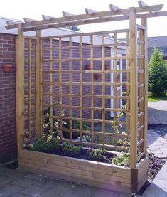 DIY Backyard Pergola Trellis Ideas To Enhance The Outdoor Life (19)