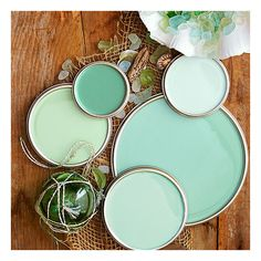 Green Paint Colors ❤ liked on Polyvore featuring backgrounds, photos, color inspiration, color palettes and fotos
