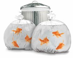 Sacos de Lixo Divertidos