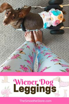 b0c6bd3bc Wiener dog leggings - my life is now complete! Get them at  TheSmootheStore.com