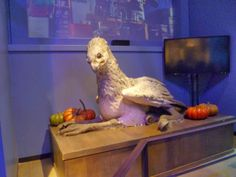 Buckbeak. Harry Potter