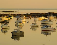 Carver's Harbor, Vinalhaven Island, Maine. Sunset. Pristine. Home<3