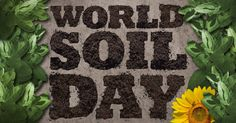 World Soil Day (WSD) is observed annually on 5 December to celebrate the importance of soil. Did you know that soil erosion has destroyed empires? Agriculture, Facts, World, Day, Decor, December, Dekoration, Decoration, The World
