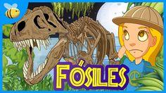 ¿Qué son los Fósiles? | Videos Educativos para Niños Fossils, Animal Kingdom, Homeschool, Princess Zelda, Videos, Animals, Fictional Characters, Art, Teacher