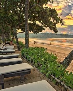 This is the first blank page of a 365 page book. Lets write a good one a memorable one Go somewhere beautiful . . photo by @nancyaryasubawa #Bali #intercontinentalbali #baliresort #InterContinentalLife #resort #bliss #balihotels #sunset #beach #holiday #luxuryholiday #palmtrees #nodestinations #beforeidie #wonderfulplaces #garden #beautifulhotels #hotelsnresorts #relax #sky #breeze #beautifuldestinations #beautifulhotels #photooftheday #travelgram #instatravels #beachresort…