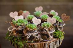 1 set, diisi macam macam atau satu macam sukulen Budget-friendly succulents as wedding favors // The Complete Guide to Picking the Perfect Wedding Favour - Part 1 Wedding Favors And Gifts, Rustic Wedding Favors, Wedding Decorations, Succulent Wedding Favors, Wedding Flowers, Cactus Wedding, Decoration Plante, Deco Floral, Cactus Y Suculentas