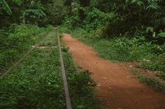The Bamboo Train // Battambang Cambodia Battambang Cambodia, Countryside, Past, Bamboo, Country Roads, Train, Past Tense, Strollers
