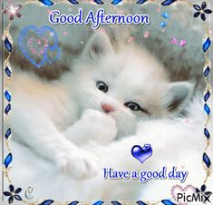 Good Afternoon Whatsapp GIF Images Messages and Wishes Gud Afternoon Images, Good Afternoon Quotes, Good Morning Friends Quotes, Good Day Quotes, Good Morning Images, Cute Good Night, Good Night Gif, Cute Good Morning, Good Night Wishes