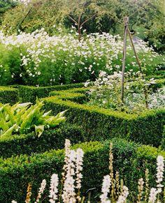 ~Sissinghurst.  The white garden A close-up of the famous white garden.
