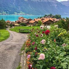Destinations, Visit Switzerland, Destination Voyage, Golf Courses, Tourism, Country Roads, River, Mountains, Landscape