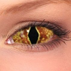 Hell Cat Sclera Contact Lenses