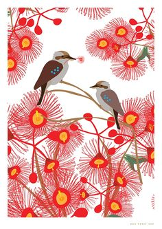 Original Mokoh Design print, proudly designed and printed in Western Australia. Australian Gifts, Australian Christmas, Australian Native Flowers, School Murals, Art Drawings For Kids, Watercolor Projects, Aboriginal Art, Mural Art, Wildlife Art