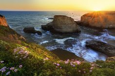 Davenport Sunset, California, USA  I reached there well ahead of sunset and was exploring the whole area searching for a vantage point. The spring flowers were blooming everywhere and ...  http://lp-mag.com/dp5y