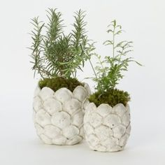 Falling Petals Pot, Tall I can make a similar container using plastic white spoons Large Outdoor Planters, Cement Planters, Indoor Planters, Flower Planters, Garden Planters, Indoor Garden, Planter Pots, Cement Garden, Herb Garden