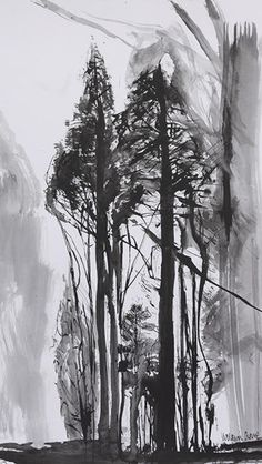 Victoria Crowe at the Scottish Gallery, Edinburgh Painting Trees, Big Tree, Tree Art, Towers, Landscape Art, Cool Drawings, Edinburgh, Branches, Distance