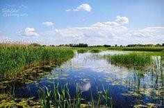 Péteri-tó(Kubsági Nemzeti Park)