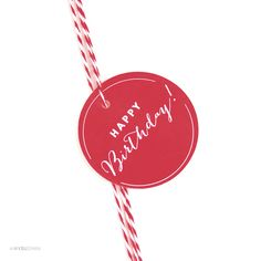 AP58553_andaz_press_gift_tags_circle_happy_birthday_playful_Red_photo