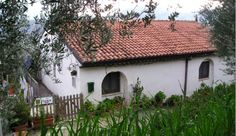 vintage homes in Italy | Apt. 1 Apt. 2 Photos Abruzzo Info Directions Contact Us Home