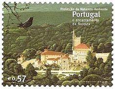 Protecção da Natureza-Ambiente - Portugal - o encantamento da floresta.
