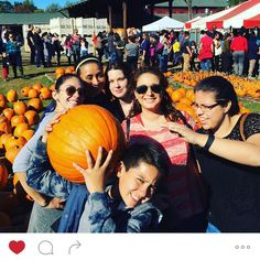 This past weekend Roxana's cakes team had a good time pumpkin picking for our family and shop. I want to thank everyone for coming this year is been so full of lessons for all of us and we becoming A big family now. #cakesinelizabethnj #pumpkin #pumkinpatch #applepicking #cakesinnj #bestcakesinnewjersey #workteam #companyparty #employed #coworkers #team #teamplayers #elizabethcitycakes #cakesnewjersey #funtime #outoftheshop #feildtrip by roxanascakesnj