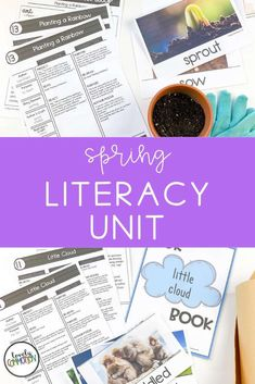 Literacy activities for preschoolers based around four popular read-alouds. This Literacy unit is based on a Spring theme. Preschool Alphabet, Preschool Lesson Plans, Literacy Activities, Literacy Centers, Authors Purpose, Vocabulary Cards, Spring Theme, Early Literacy, Early Education
