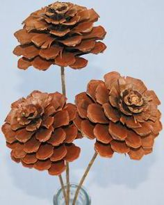 Pine Cone Roses