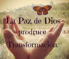La Paz de Dios produce Transformación