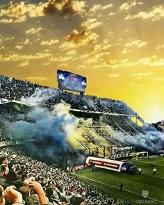 Football Stadiums, Messi, True Colors, Martini, Grande, Beats, Frases, Soccer Art, Exotic Beaches