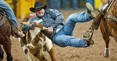 Any of you watching the NFR? Any of you steer wrestling fans.?