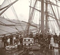 Crew of the British sailing vessel AUSTRALIAN shown on deck, Tacoma, Washington, ca. 1904. :: Wilhelm Hester Photographs