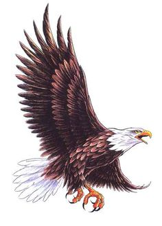 "This is what I want for part of a memorial tattoo for my Grandpa Kirchenbauer. I was the first grandchild/grandson to graduate from his high school alma mater, and their mascot was an Eagle. I want it to read with his name, 1933-1999, and the eagle to have a banner in his talons that reads ""Soaring With Angels"". Love and miss you Grandpa..."