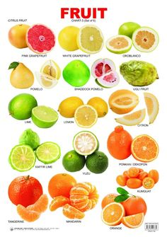 citrus juicer tends to help people realize more benefits from Citrus juice is a much healthier alternative to a soda Citrus Fruit List, Fruit And Veg, Fruits And Veggies, Vegetables, Citrus Fruits, English Tips, English Lessons, Learn English, Deep English