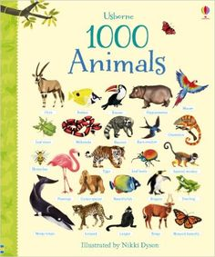 Usborne Book 1000 Animals - Hardback A Beginners Book of Animal Word/Picture Identification This delightful word book shows exactly one thousand animals, each individually named and lovingly illustrat Famous Pictures, Word Pictures, Animal Pictures, Minke Whale, Dog Food Online, Barn Swallow, Cockerspaniel, Young Animal, Ideas
