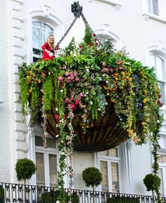 Now THAT'S a hanging basket!