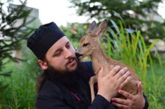 Monk and fawn. Ages Of Man, The Holy Mountain, Religion, Orthodox Christianity, Orthodox Prayers, Jesus Art, Orthodox Icons, Kirchen, Spirit Animal