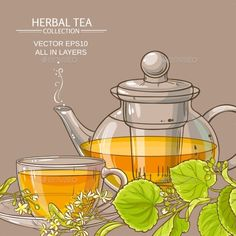 Buy Linden Tea Vector Background by on GraphicRiver. linden tea in teapot and cup of tea on color background Plant Sketches, Food Sketch, Cute Pastel Wallpaper, Mother Art, Teapots And Cups, Tea Art, Food Drawing, Herbal Tea, Food Illustrations