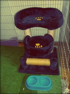 Cat hotel in Budapest, inside of kennel. soft kitty furniture :)