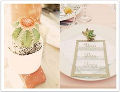 Potted cacti and succulents and a laser cut wood grain menu were all amazing accents to this pastel mexican-inspired wedding.  Design by Alchemy Fine Events