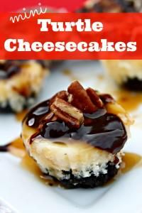 These Mini Turtle Cheesecakes are the perfect size! With the delicious combo of cheesecake, fudge, caramel, and pecan - I bet you can't eat just one! Bite Size Desserts, Köstliche Desserts, Dessert Recipes, Individual Desserts, Turtle Cheesecake Recipes, Cheesecake Bars, Cheesecake Cupcakes, Chocolate Cheesecake, Mini Cherry Cheesecakes