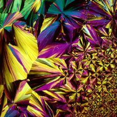 images de boissons au microscope martini   Les images de boissons au microscope sont de lart moderne   polarise photomicrographie photo micr...