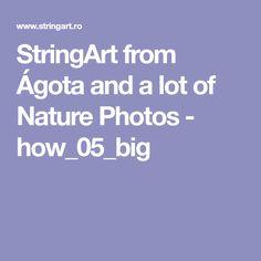 StringArt from Ágota and a lot of Nature Photos - how_05_big
