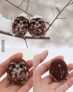 These are NOT two happy owls and i thought they where. butttt they are stil very cute
