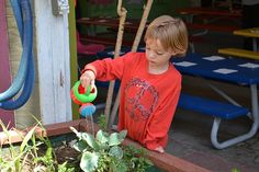 Organic Gardening at #CamelotKids Preschool and CDC! Get ready to plant and seed your way into oblivion with this unique and hands on approach to gardening.  More about our programs here: http://camelotkids.org/programs/enrichment/  #CamelotKids #Enrichment #earlyeducation #Gardening