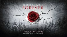Carter Burwell - Twilight Overture [Breaking Dawn Part 2 - Score] @Faith Bigler idc if you dont like twilight this song is so BEAUTIFUL.
