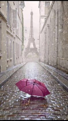 Photo about Eiffel tower view from the street of Paris. Black and white photo with red element. Image of detail, french, paris - 40795305 Beautiful World, Beautiful Places, Beautiful Pictures, Beautiful Streets, Rainy Paris, Paris Torre Eiffel, Paris Love, Paris Paris, Singing In The Rain