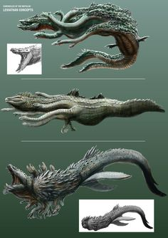 CotN: Leviathan Concept Sketches by *LDN-RDNT on deviantART / Concepts and ideas for the Chronicles of the Nephilim Leviathan Monster Art, Monster Concept Art, Fantasy Monster, Monster Design, Alien Creatures, Mythical Creatures, Sea Creatures, Creature Feature, Creature Design