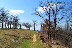 Rim Trail, Mount Nebo State Park, north end.