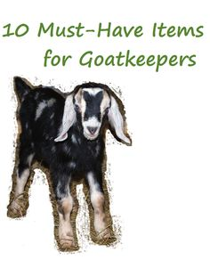 10 Must-Have Items for Goatkeepers - what you need to have on hand if you have goats! from Oak Hill Homestead